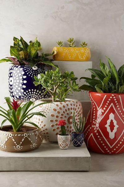 best-resim-cercevesi-seklinde-saksilardan-faydalanip-bitkilerle-sonbahar-dekorasyonu-5 Bitkilerle sonbahar dekorasyonu
