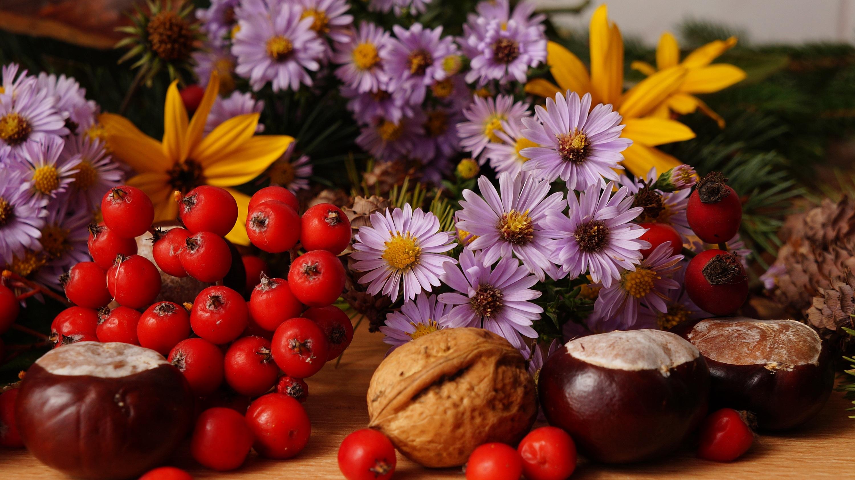 cool-doga-bitki-meyve-cicek-dekorasyon-bitkilerle-sonbahar-dekorasyonu-22 Bitkilerle sonbahar dekorasyonu