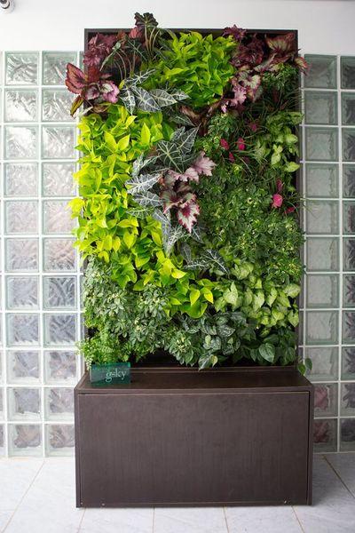 elegant-pencere-onu-bostanlari-bitkilerle-sonbahar-dekorasyonu-9 Bitkilerle sonbahar dekorasyonu
