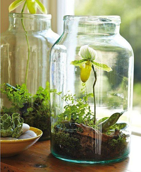 Modern Eğer banyonuza da hareket katmak Bitkilerle sonbahar dekorasyonu