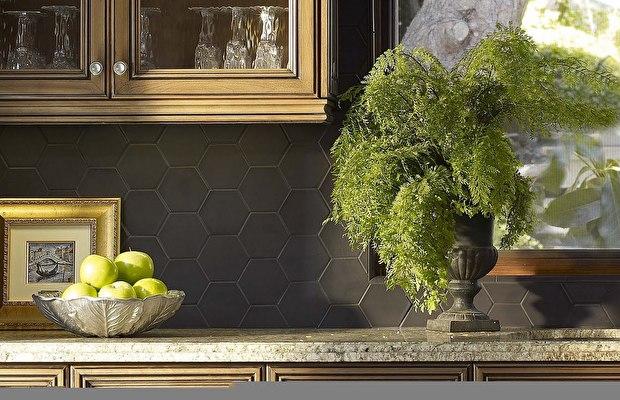 photos-of-ev-sus-salon-bitkisi-evinizin-havasini-temizleyen-bitkiler-11 Evinizin havasını temizleyen bitkiler