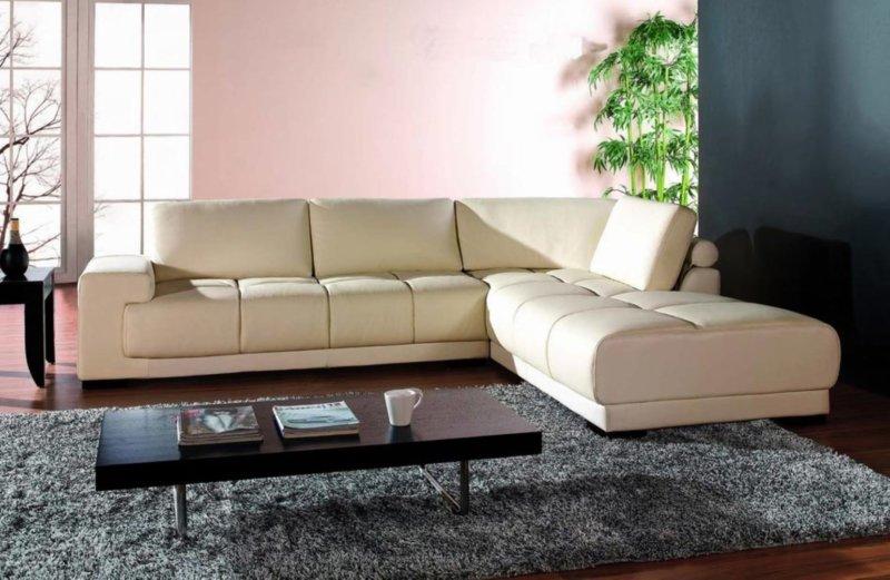 compact-bu-tur-en-iyi-kanepe-rengi-nasil-secilir-10 En İyi Kanepe Rengi Nasıl Seçilir?