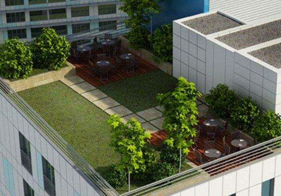 Güzel Çatı Bahçesi Yapımı