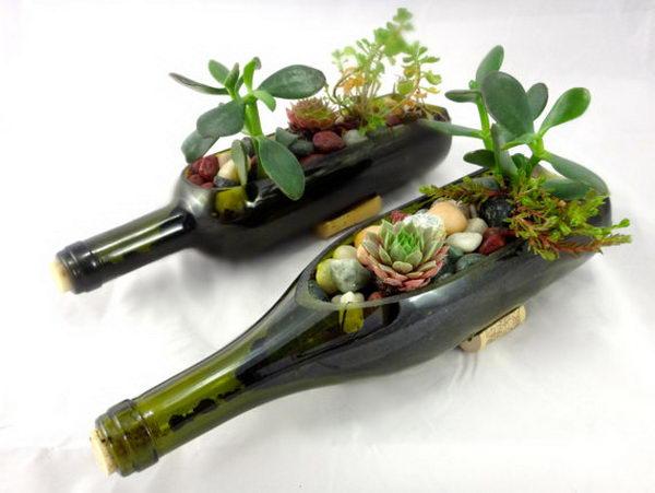 cam-siselerden-dekoratif-saksılı-cam-şişleri-değerlendirme-modeli Dekoratif cam şişe nasıl yapılır?