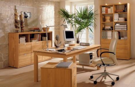 home ofis evler
