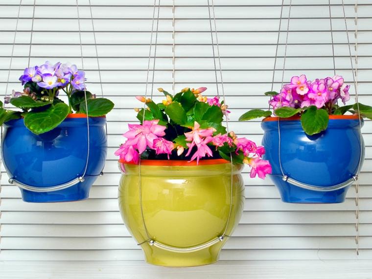 plantas-colgantes-de-interior Dekorasyonda Kullanabileciğiniz En Şık Dekorasyon Ürünleri